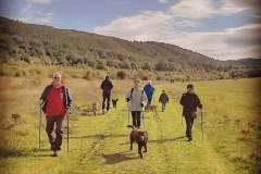 nordic-walk5