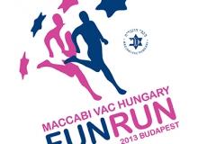 funrun_2013_variations